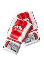 Gloves-Grappling-Red&White-Web