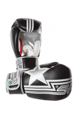 Gloves-Boxing-FuriousLine-10oz-Black-Web