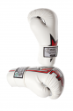 Gloves-Boxing-FuriousLine-White-Web